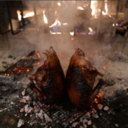 Duck with Molasses